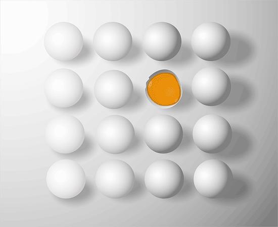 Ist es gut oder schlecht, jeden Tag Eier zu essen