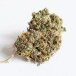 kann Marihuana helfen, Asthma zu behandeln? 6 Vorteile sagen Ihnen die Antwort