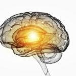 25 beste Gehirnnahrung, die Ihr Gedächtnis verbessern (Bonus)
