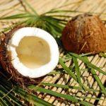 Kokosnussbutter: Alles, was Sie wissen müssen (Ernährung, Vorteile, was es ist)