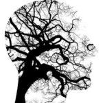 Was ist eine neurodegenerative Erkrankung? 7 Neuro-Krankheiten, die Sie kennen sollten