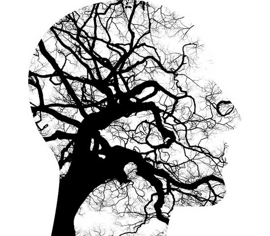 Was ist eine neurodegenerative Erkrankung 7 Neuro-Krankheiten