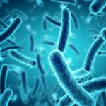 Was sind Probiotika? 5 gesundheitliche Vorteile von Probiotika, die Sie kennen müssen