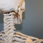 Welche Nahrungsmittel sind gut für die Knochengesundheit? 13 Lebensmittel