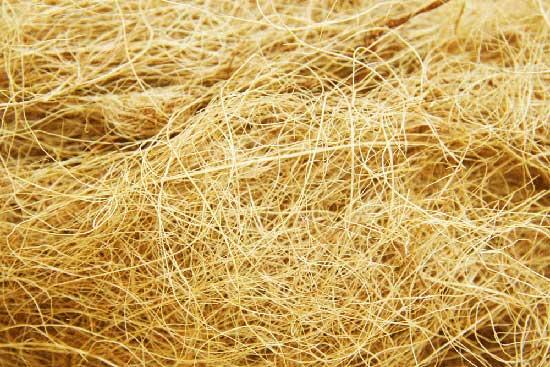 Lösliche Faser vs. unlösliche Faser (Was ist der Unterschied)