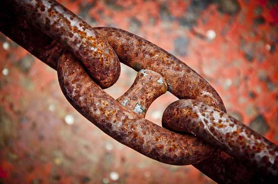 Welche Lebensmittel enthalten viel Eisen (Top 15 Liste)