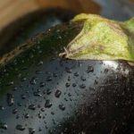 Top 11 gesunde Ernährung Wirkung von Auberginen (Kalorien und Vitamine im Inneren!)
