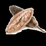 11 interessante gesunde Wirkung von Baobab (Obst oder Pulver!)