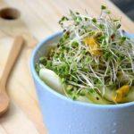 11 nachgewiesener Nährwert und Wirkung von Brokkolisprossen (gesund!)