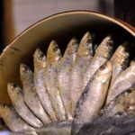 Wenn man Sardinen liebt: 11 gesunder Ernährungseffekt, den Sie wissen wollen!