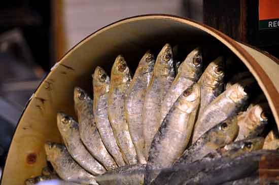 Sardinen 11 gesunder Ernährungseffekt
