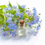 Sind ätherische Öle sicher und gesund? (28 Dinge zu wissen)