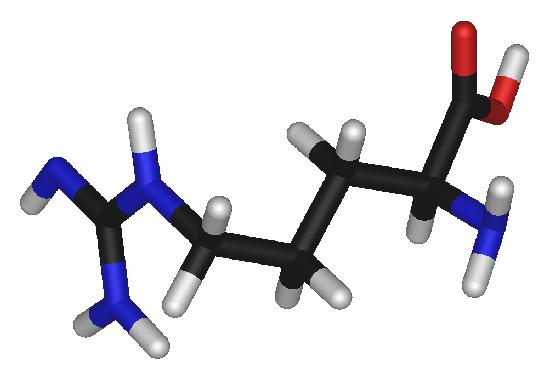 Top 10 der gesunden Wirkung von L-Arginin