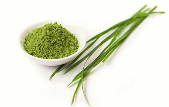 Top 11 gesunde Ernährungswirkung von Gerstengras (inklusive Pulver und Saft!)