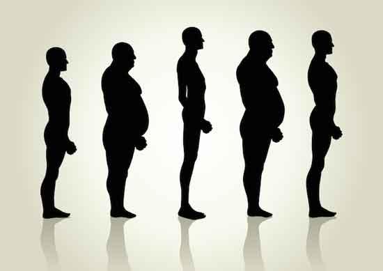 Was ist ein mesomorpher Körpertyp Wie viele Körpertypen