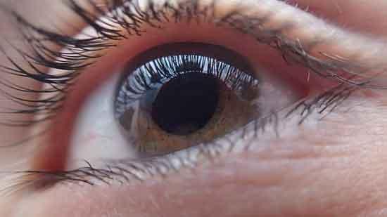 Was verursacht Glaukom Forscher finden die Antwort!