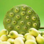 13 Lotus-Samen gesunde Ernährung Wirkung, die Sie vielleicht noch nicht kennen!