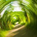 11 mögliche Ursachen von Schwindel und wie man vorbeugen kann