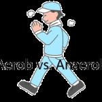 Unterschied zwischen aerob und anaerob (Nutzen und Risiko)