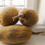 Die 6 wichtigsten Vorteile von Baobab Obst und Pulver