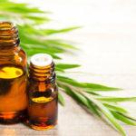 14 Möglichkeiten, Teebaumöl zu verwenden und Vorsichtsmaßnahmen