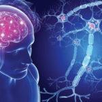 Multiple Sklerose (MS): Definition, Symptome, Ursachen, Behandlung, Prognose