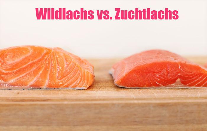 Wildlachs vs. Zuchtlachs Welche Lachsart ist gesünder