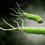 H. Pylori Bakterien Infektion: Ursachen, Symptome und Behandlung