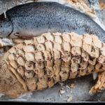 Iss Fisch, aber kein Fleisch! Was ist ein Pescatarian?