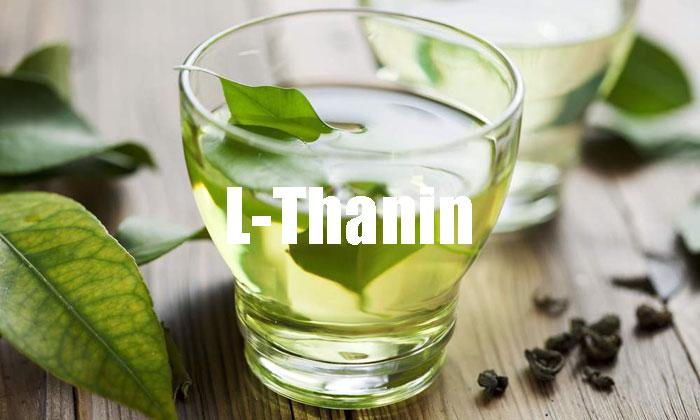 L-Thanin Dosierung, gesunde Wirkung und Nebenwirkungen