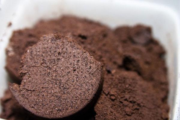 16 Kreative Anwendungen für gebrauchte Kaffeepflanzen
