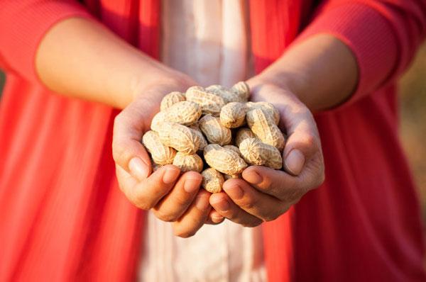 Erstes Medikament gegen Erdnussallergie nähert sich der FDA-Zulassung