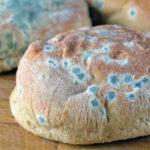 Ist es sicher, schimmeliges Brot zu essen?