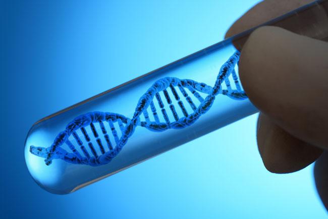 Proto-Onkogen Definition, Funktion und Zusammenhang mit Krebs