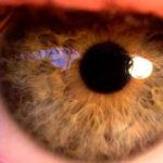 Was ist die normale Pupillengröße und wann ändern sich die Pupillen?