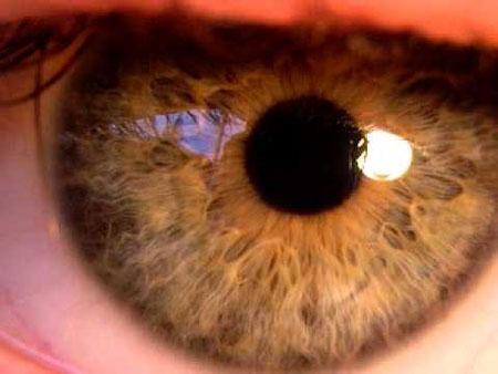 Was ist die normale Pupillengröße und wann ändern sich die Pupillen