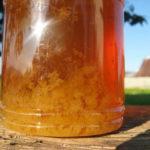 Wird Honig jemals schlecht? Was Sie wissen sollten