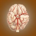 Zerebrale Durchblutung: Definition und Patientenaufklärung